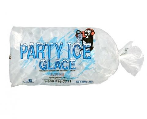2.7kg ice bag