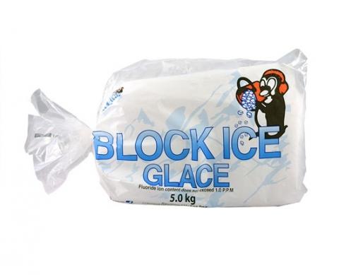 5kg ice bag